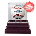 Display Cases, Baseball: Tampa Bay Rays Single Ball Antique Mahogany Display Case