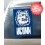 Connecticut Huskies Car Window Flag