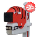 Home Accessories, Outdoor: Cincinnati Bengals Helmet Mailbox