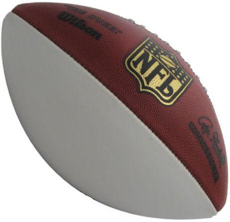 Wilson NFL 1 Panel Autograph Football F1180