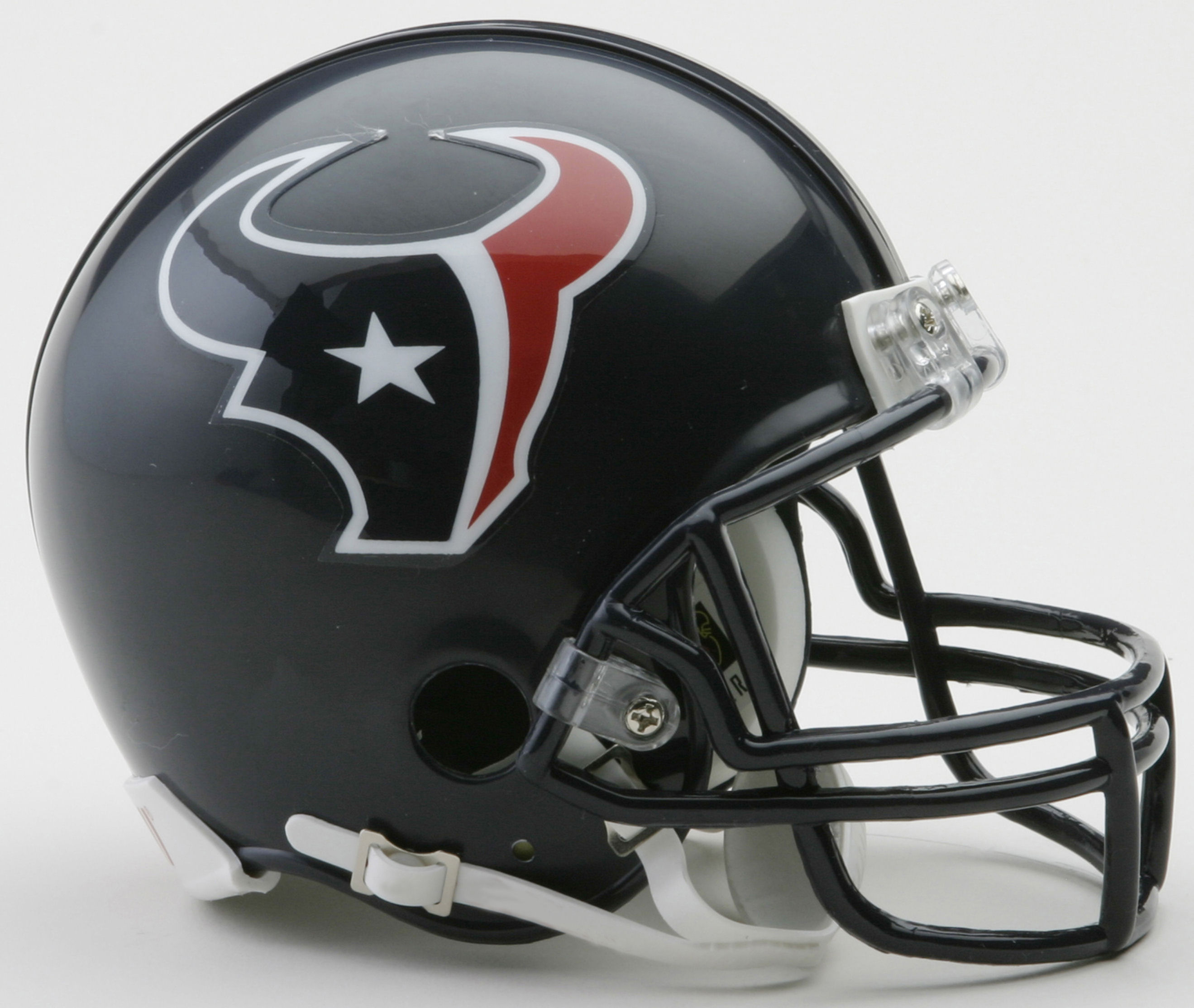 Houston Texans NFL Mini Football Helmet
