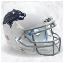 Nevada Wolfpack Full XP Replica Football Helmet Schutt <B>Dark Decal</B>