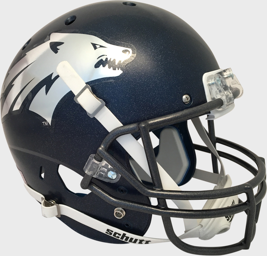 Nevada Wolfpack Full XP Replica Football Helmet Schutt <B>Matte</B>