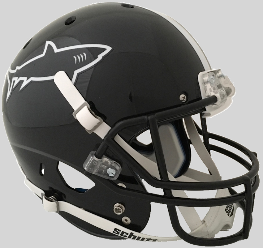 Any Given Sunday Miami Sharks Full XP Replica Football Helmet Schutt TV
