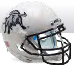 Utah State Aggies Full XP Replica Football Helmet Schutt <B>Aggie</B>