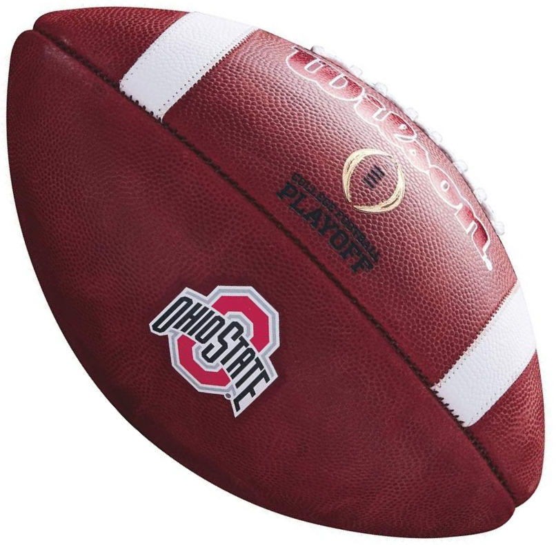 Wilson Official Leather NCAA Ohio State Buckeyes College Game Football